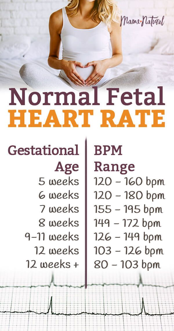 Normal Fetal Heart Rate Is Your Baby On Track Baby Heart