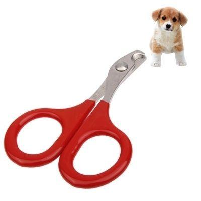 amazones gadgets QT Small Pet Nail Clipper Nail Scissors Pet Dog Cat Scissors Cutter: Bid: 25,99€ (£23.21) Buynow Price 25,99€ (£23.21)…