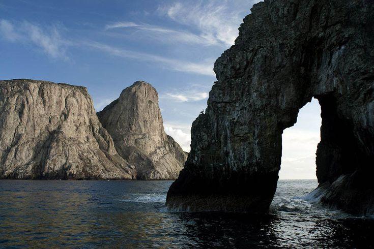 Malpelo island, Valle del Cauca, Colombia. UNESCO World Heritage
