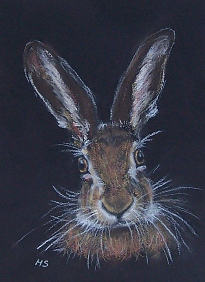 Brown Hare Painting Limited Edition Fine Art Print - Mary Schofield
