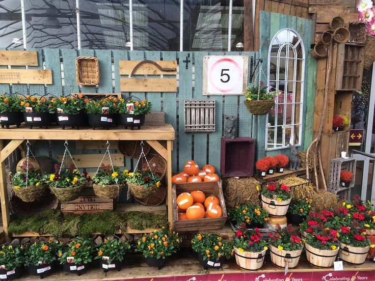 Autumn tub and basket display. Squires Garden Centre, Badshot Lea - November 2016