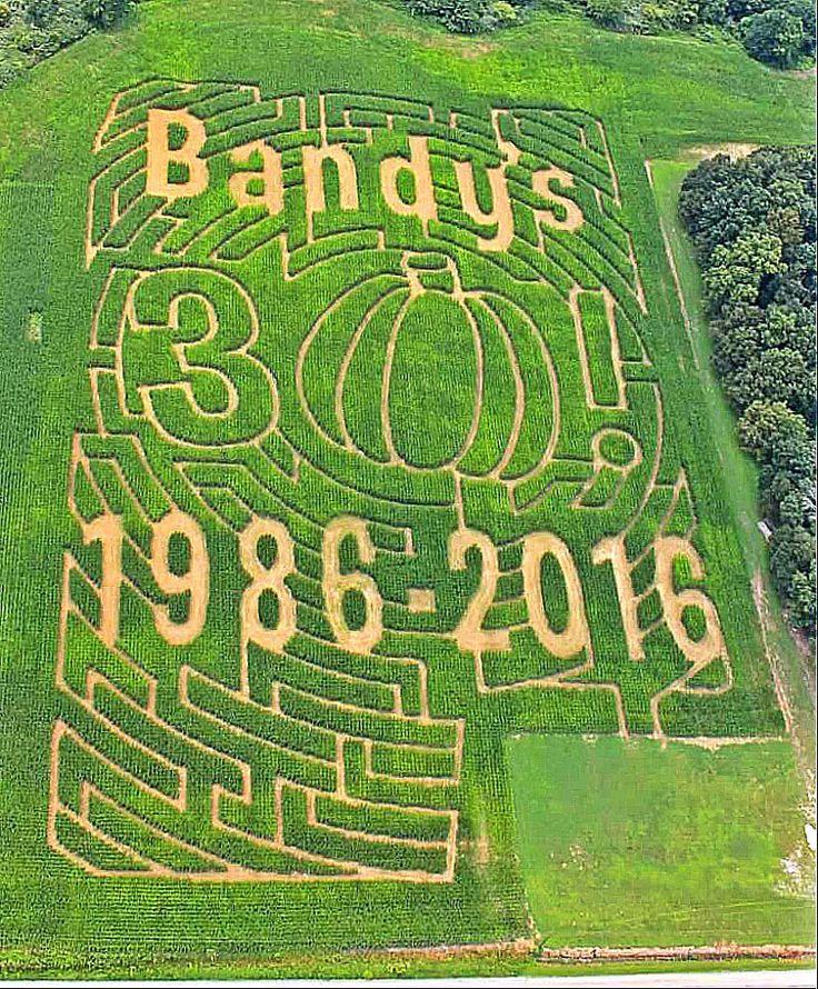 Bandy's Pumpkin Patch