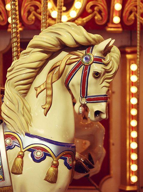 Carousel Horse  the Stanislaus County Fair by Megan Collin, via Flickr.