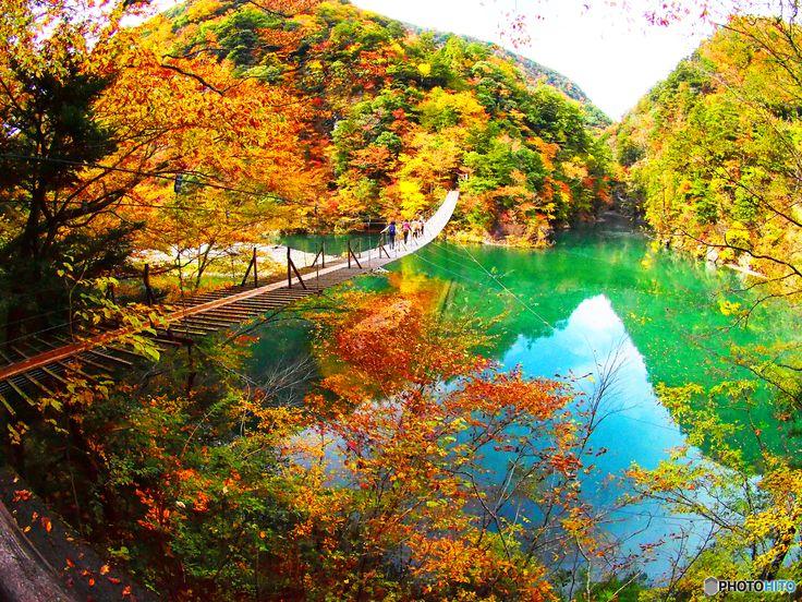 色彩の山 - 写真共有サイト:PHOTOHITO #紅葉 #寸又峡 #Autumn