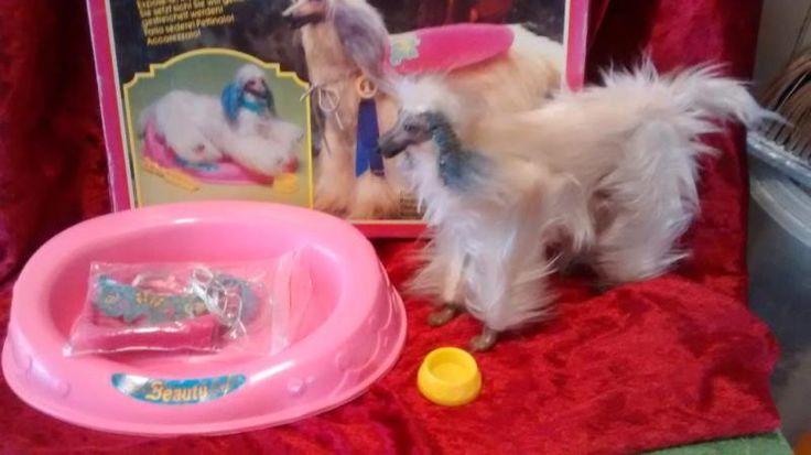 Beauty Barbies Hund mit Zubehör in original Verpackung.Inkl Versand 50,00€