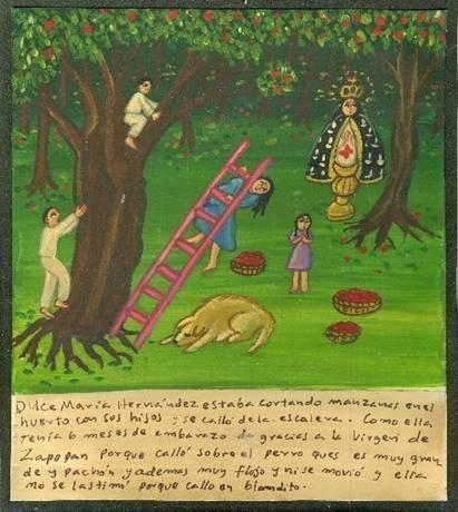 Дульсе Мария Эрнандес вместе с детьми собирала в саду яблоки и упала с лестницы. Поскольку она была на шестом месяце беременности, то благодарит Пресвятую Деву Сапопанскую за то, что упала на большую жирную собаку. Та оказалась вдобавок настолько ленивой, что даже не шелохнулась, и падение прошло безболезненно и мягко.