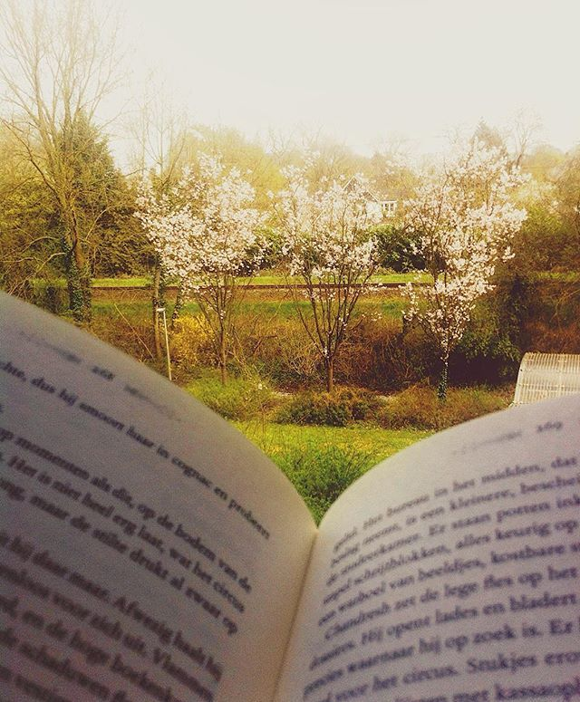 Spring is here! And so is the itch in my nose and eyes  But hey, as long as I can still read, it's all fine! So, currently I'm reading The Night Circus. I'm half way trough and I really like it so far. Kinda wish this circus was real  what are you reading today? Meanwhile I'm on my way to Amsterdam for the Macklemore & Ryan Lewis concert! So excited! What are your plans .....