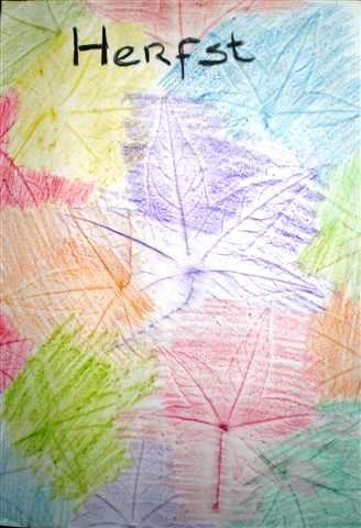 Herfst bladeren, bomen, bos, wasco