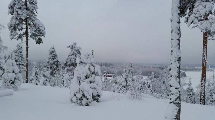 Feb 5th 2015 in southeastern Finland, Uudenkylän harju view from skiing track