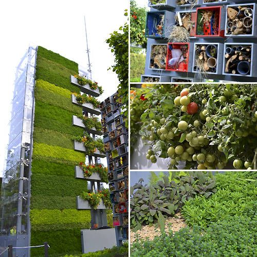 Vertical Vegetable Garden. What a great concept. In large cities like New York, Paris and London, up is the way to go.