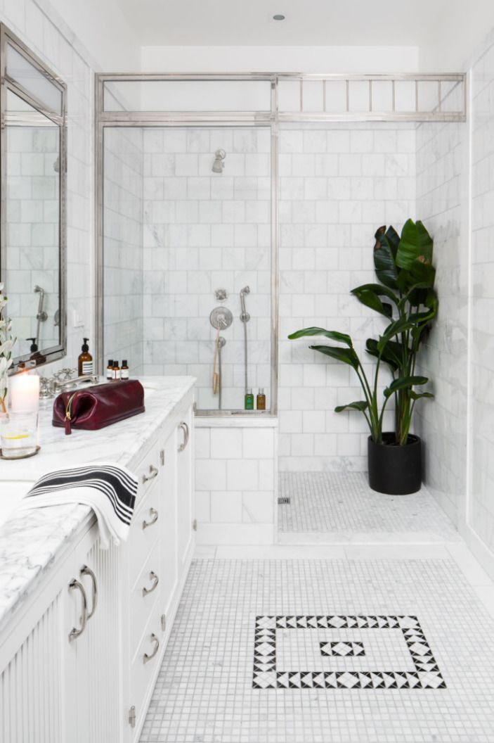 Cool Bathroom Plants 79 best design // bathroom images on pinterest | bathroom ideas