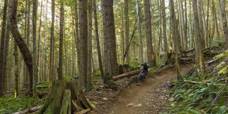 The faster the better.- Half Nelson + Full Nelson Mountain Bike Loop