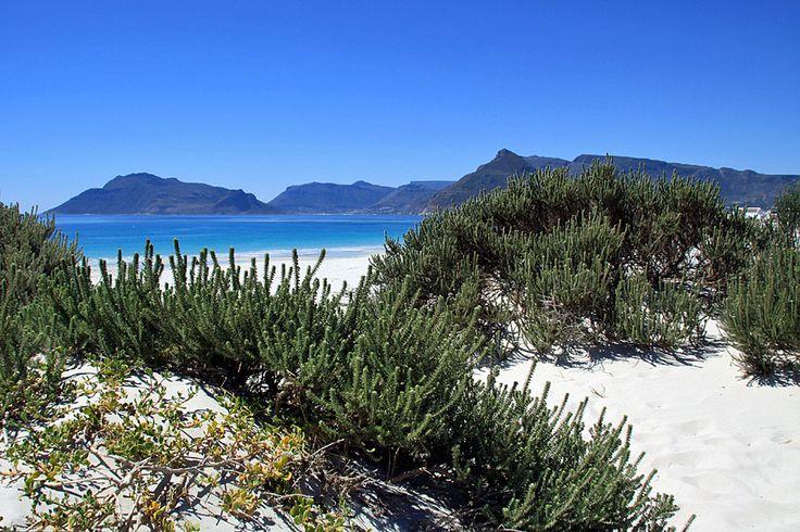 Kommetjie Beach, Cape Town, South Africa