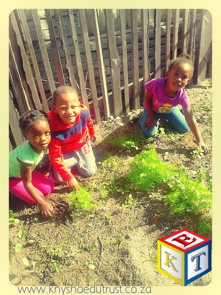 We received a donation of seeds from Ireland! The children at Little Care Bears show off the results! They are proud of their veggie garden!