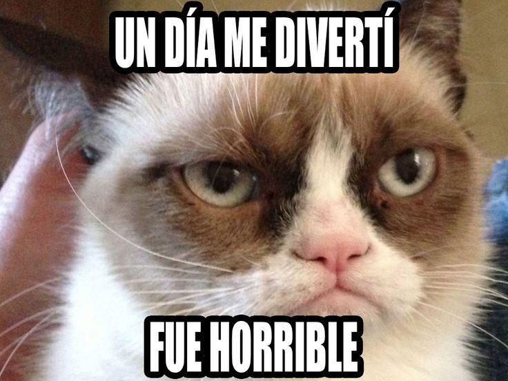 8f1f6fad95f3c04448c156fab6a6433a grumpy cat cat s?strip=all&quality=55&smooth= 15&contrast=10 cat names male memes enamorados con