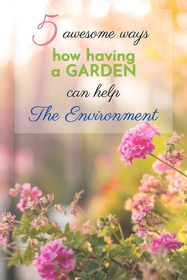 8f1f8003d9c86d861d99546ee1eb87f0 - How Does Gardening Help The Environment
