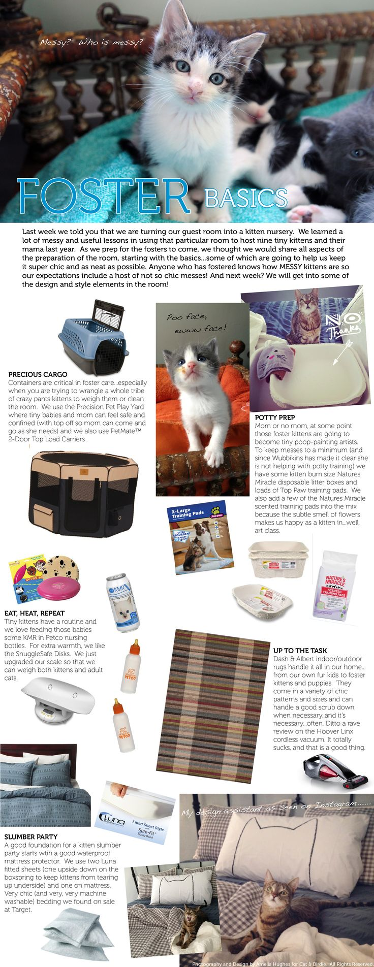 Room To Grow - Kitten Foster Care Essentials : Cat & Birdie #HelpingAnimals {03.11.2014}