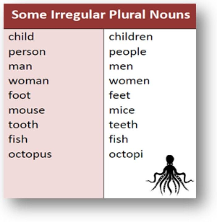 plural form of essay 5 singular and plural nouns to be sure that you are using the correct plural form  an essay, the woman.