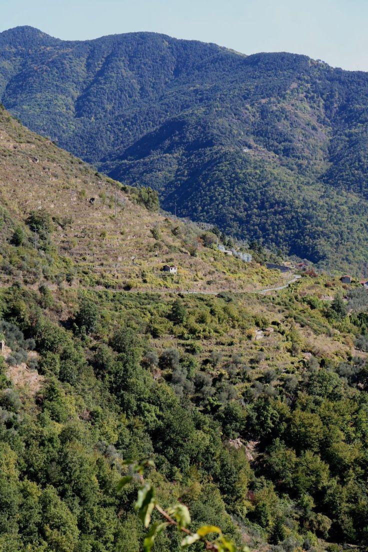 Castelvittorio (IM) - Vallone del torrente Bonda