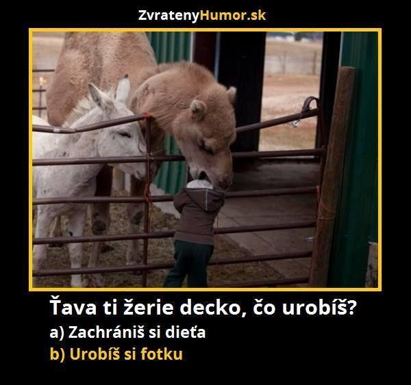 Vtipy související s módou (593) - Diskuse - Módnípeklo.cz