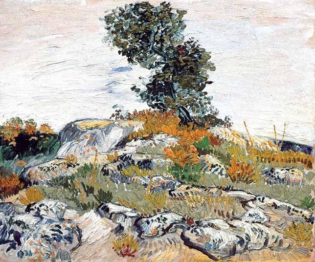 ARLES CHAMPS Rochers avec un chêne – juillet 88