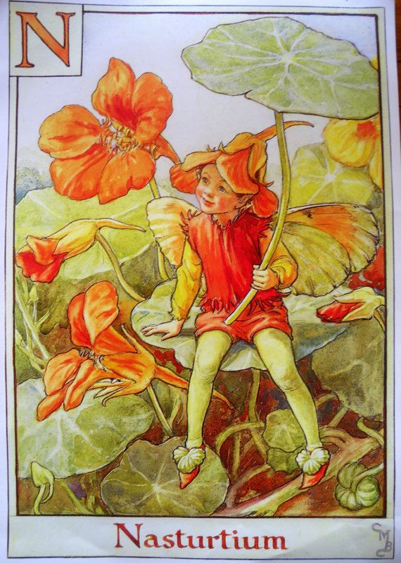 The NASTURTIUM FAIRY Cicely Mary Barker by sandshoevintageprint