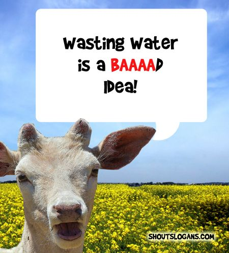 Wasting water is a bad idea.