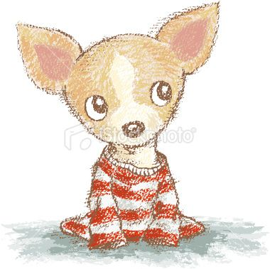 33 best chihuahuas images on Pinterest | Chihuahua dogs, Chihuahua ...