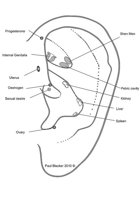 A protocol of auricular acupuncture points for the treatment of #infertility.