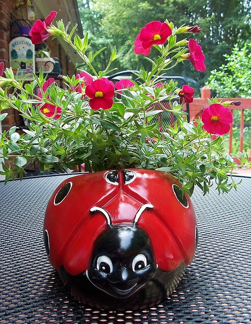 Ladybug Pot
