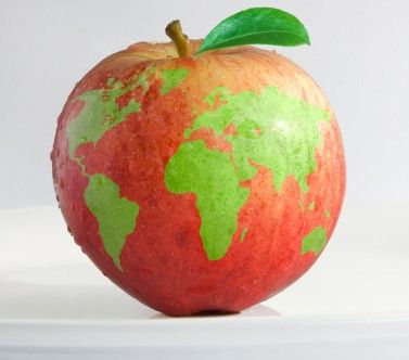 mela - Cerca con Google