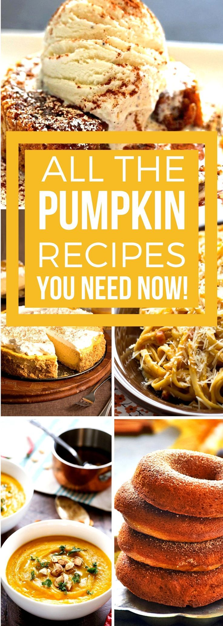 All the pumpkin recipes you need!! Sweet and savory & perfect for fall! Delicious and easy to prepare, these Sunday Supper recipes are perfect for holidays and special occasions, or whenever you want to enjoy the uniquely spicy-sweet flavor of pumpkin! #SundaySupper #pumpkinrecipes