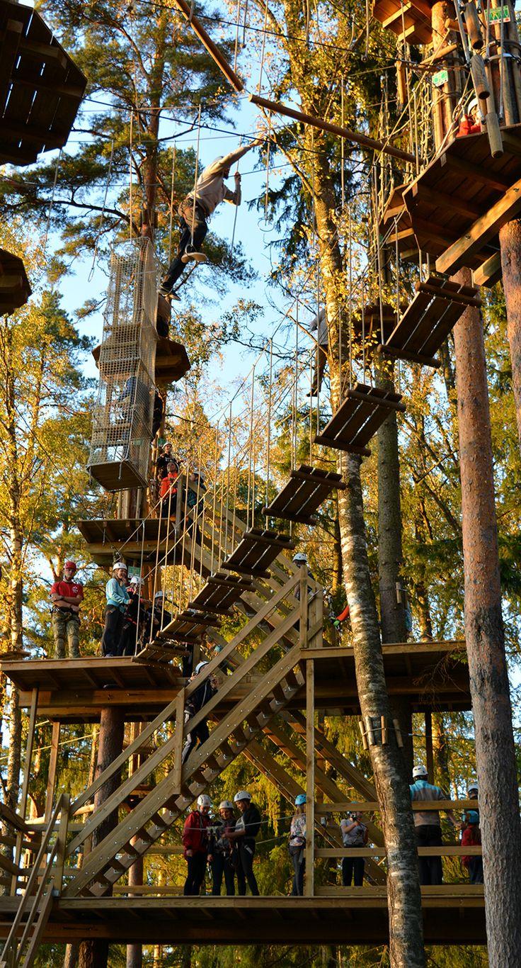 Seikkailupuisto Huipun alaradoilla pääsee nousemaan jopa 18 metrin korkeuteen.  The uppermost courses in Treetop Adventure Huippu are 18 meters above the forest floor. #seikkailupuisto #treetopadventure #finland