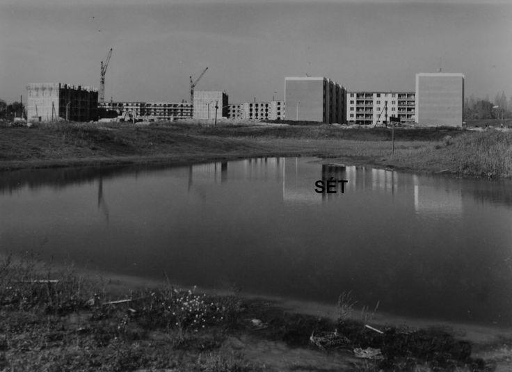 Zápor tó 1968