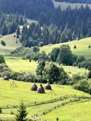 Landscape of Carpathians, Zakarpattia Oblast, Transcarpathia, Ukraine