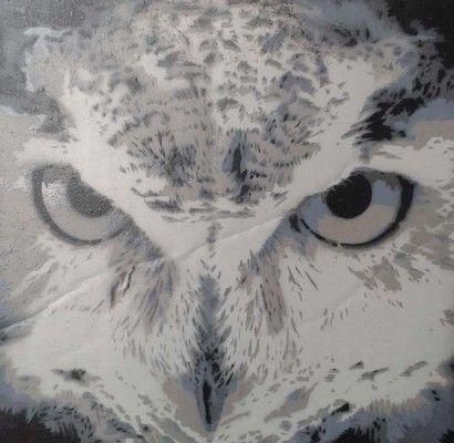 Owl by La T'Ash (Netherlands)