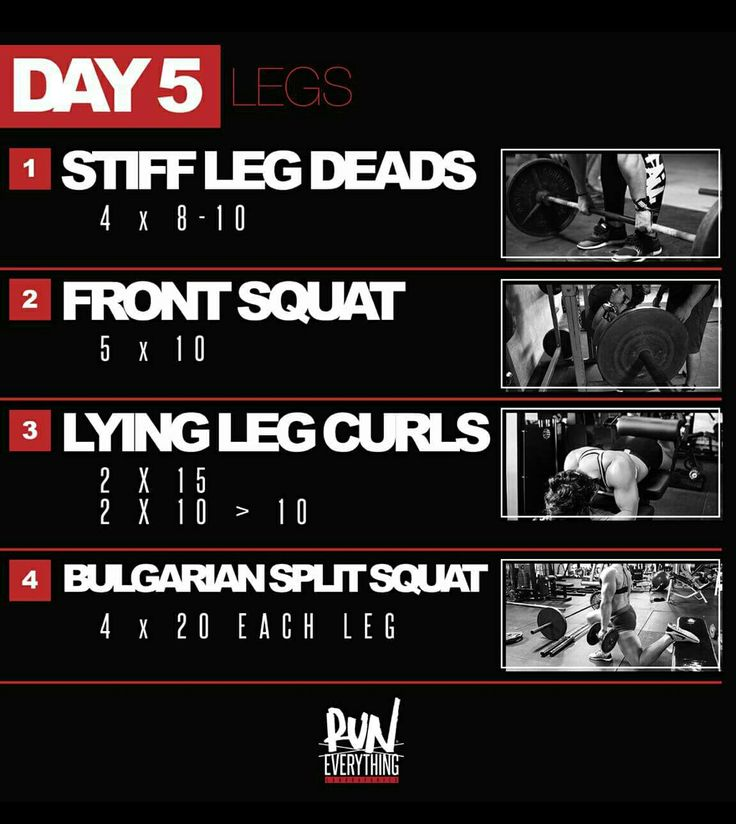 Dana Linn Bailey 28 day program day 5