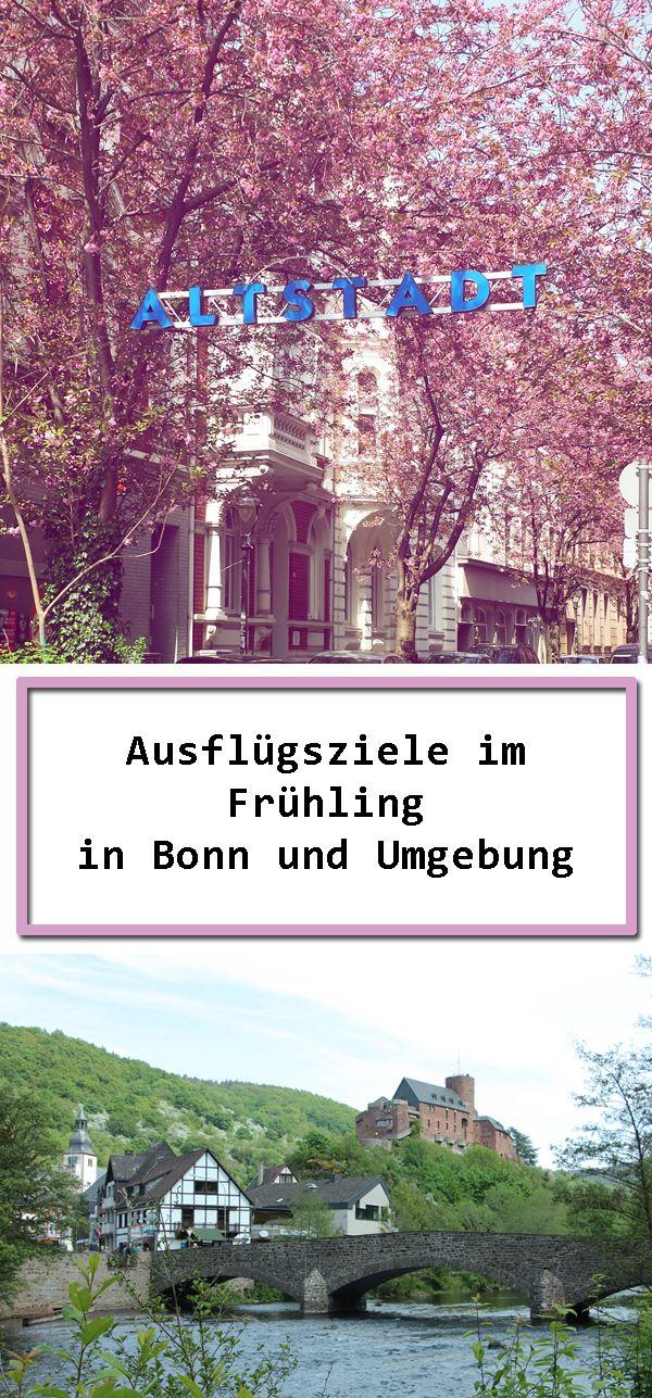 Die Kirschblüte in der Bonner Altstadt und weitere Ausflugstipps.
