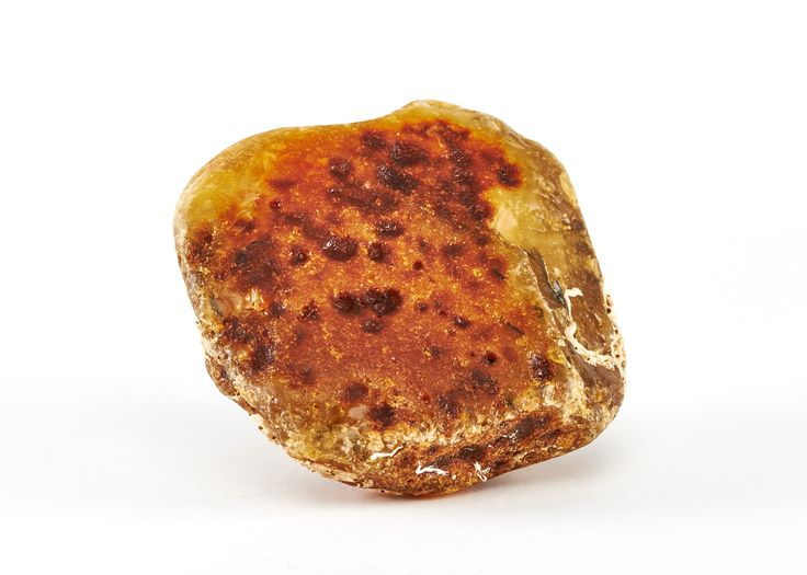 Amber Auctions | Lot 031|Very rare and unique Baltic amber stone found in the waters among seaweed. This kind of pieces can be seen only in museums. Size: 12 x 7.7 x 12 cm Weight: 512 g. amberauctions.com #rare #amber #stone #raw #white #unique #photography #baltic