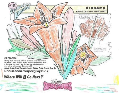 u haul supergraphics coloring contest pages - photo #11