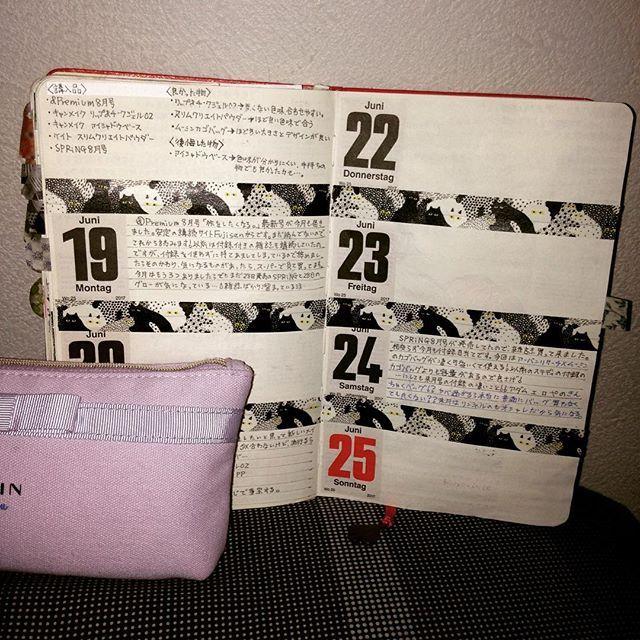 mumeigakadiary 19 JUNE_ 25JUNE  新しいコスメを買って、雑誌についていたカゴバッグにニヤついていたり…。 #モレスキン #moleskine  #日記 #Diary #journal #マステ #マスキングテープ #雑誌付録 #美人百花 #ペンケース2017/07/27 23:22:03