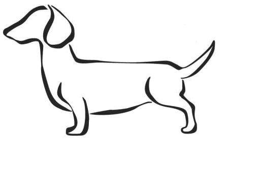 Dachshund, Doxie, Wiener