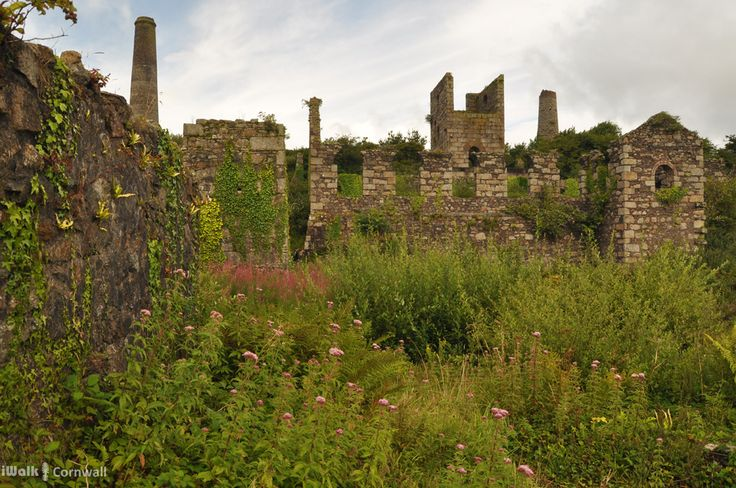 Remains on the Great Flat Lode, Cornwall