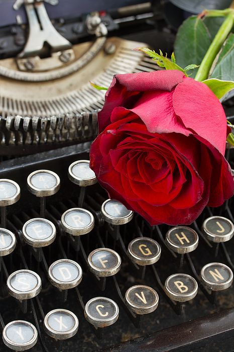 One red rose on vintage typewriter close up by Anastasy Yarmolovich #AnastasyYarmolovichFineArtPhotography  #ArtForHome #vintage