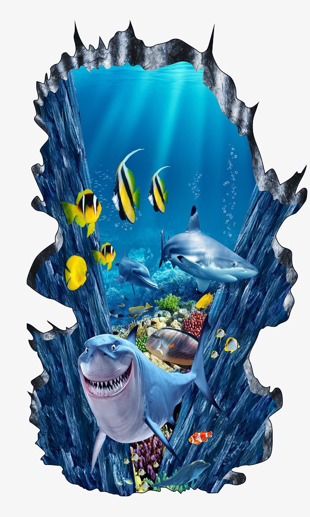 3 Dolphin Art Stickers Ocean Art Stickers Dolphin Art Stickers Sea Glass Stickers Sea Stones Art