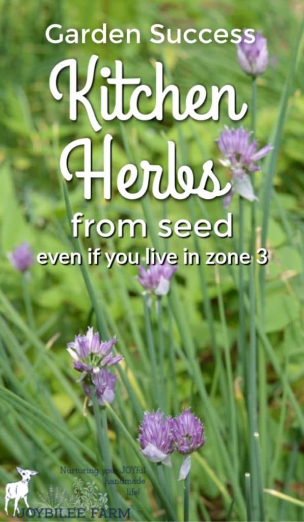 11 Kitchen Herbs To Plant From Seed Even If You Live In Zone 3 Joybilee Farm Diy Herbs Gardening Kitchen Herbs Planting Herbs Growing Herbs Outdoors
