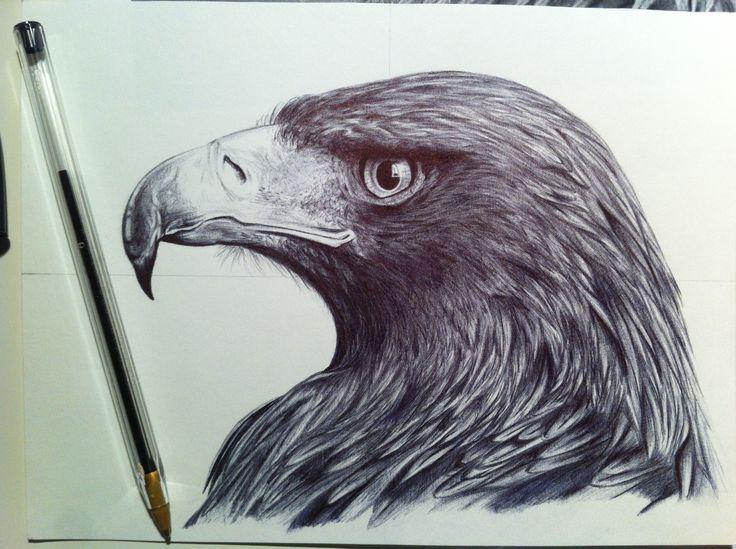 Primer dibujo a boli después de más de 12 años. Todos los dibujos son mios. All drawings are mine.