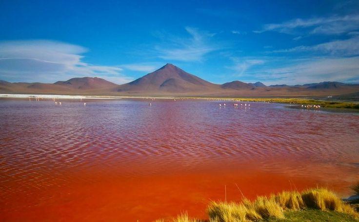 Эти озера самые удивительные на планете!