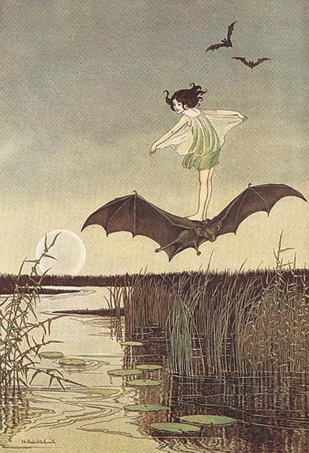 the witches sister on her black bat  (my annaliese sent this card to jim and me for our anniversary, which is Halloween)