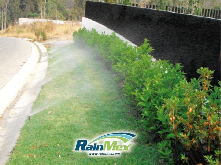 Ingeniería, diseño, instalación y mantenimiento de sistemas de riego por aspersion automatizados. Diseño de jardines y muros verdes, aspersores, rociadores